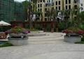 圆形花钵,圆形树池,木制花架