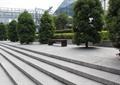 防腐木凳,台阶踏步,树池