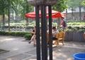 祥云景观柱,景观小品,遮阳伞,地面素材