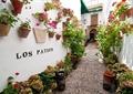 壁挂花盆,道路,地花