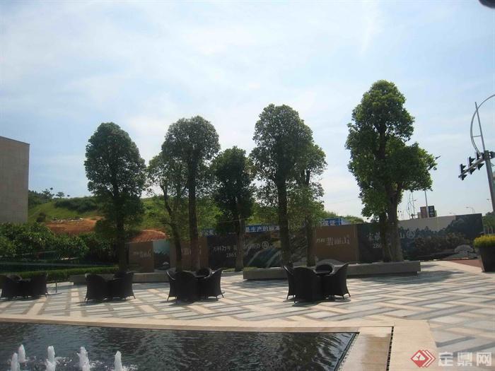 住宅去广场景观,桌椅,喷泉水池,树池