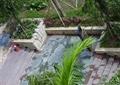 人行道,阶梯,台阶,树池,花坛,绿化带