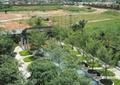 住宅小区泳池景观,泳池,树池,廊架,喷泉水池