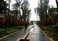 小区人行道,小区大门,水池景观,绿化带