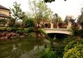 水池景观,园桥,园桥拱桥,景石石头