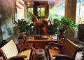 藤椅,马雕塑,花钵,墙面造型