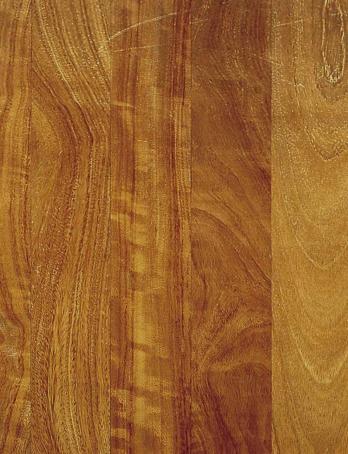 木材皮3d,su材质贴图