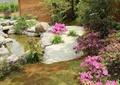庭院花园,庭院景观