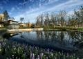 住宅去水池景觀,水池,駁岸