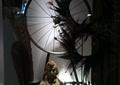 服装店,橱窗展示,单车车轮,羽毛