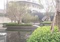 中庭景观,种植池,水池,长廊,长廊架