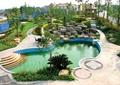 小区游泳池,叠石,园路