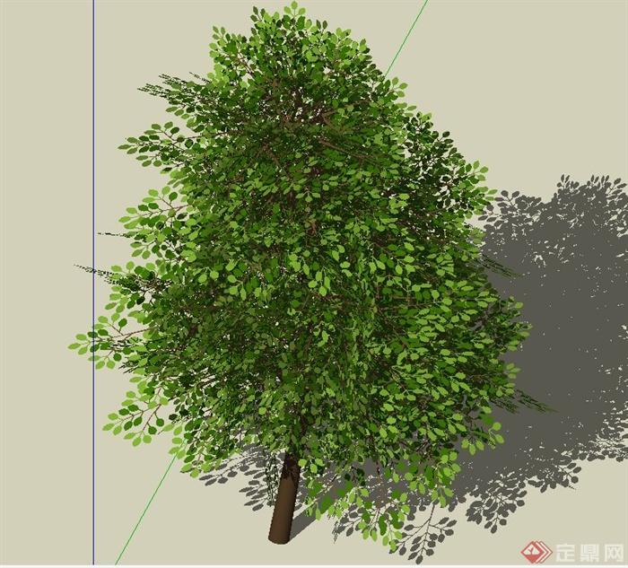 园林景观常用3d乔木设计su模型