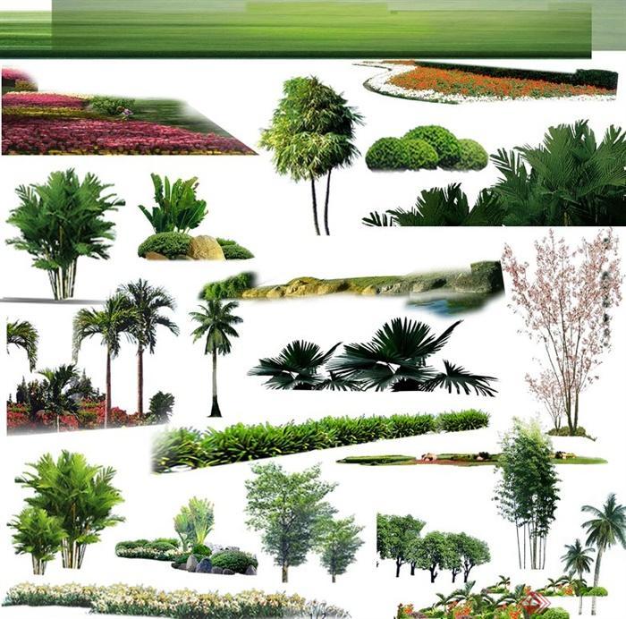 园林景观绿化植物psd素材[原创]