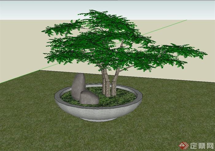 松树盆景设计su模型