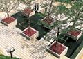 方形树池,园路