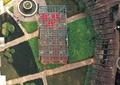 廊架,亭子,圆形水池,园路