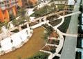 小区中央景观,园路,水池,树池,景墙门