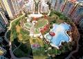小区中庭景观,泳池,园路,草坪