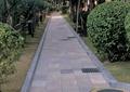人行道景观,绿化带,排水沟