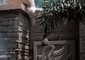 景墙设计,雕塑小品,浮雕景墙
