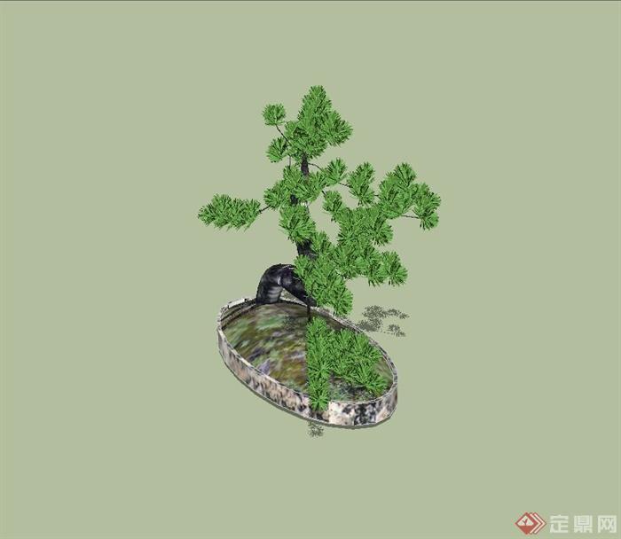 某松树盆景设计su模型