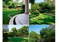 别墅庭院,庭院花园,草坪,汀步,水池