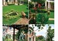 别墅庭院,庭院景观,庭院花园,草坪