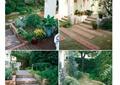 庭院花园,庭院景观,庭院,汀步