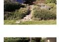 庭院花园,花园,花园景观