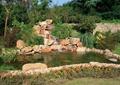 景石假山,水池,自然石驳岸