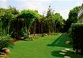 庭院景观,庭院,草坪,花架