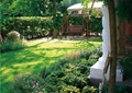 庭院景觀,陽光草坪,秋千搖椅,灌木墻