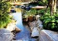 溪流,溪流水景,自然石驳岸