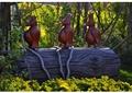 鸟类雕塑,雕塑小品