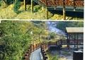 木棧道橋,護欄,木欄桿