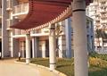 廊架设计,廊架柱,木廊架
