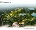 湿地公园,公园,公园景观