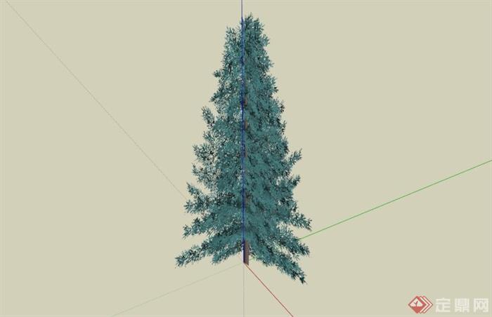 常见景观树植物SU模型库(2)