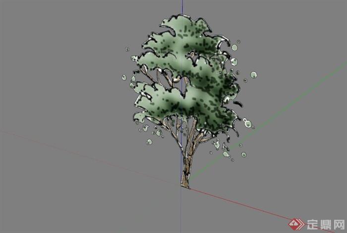 常见景观树植物SU模型库(5)