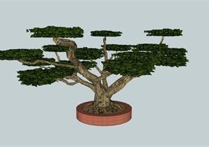 现代树池设计SU(草图大师)模型素材