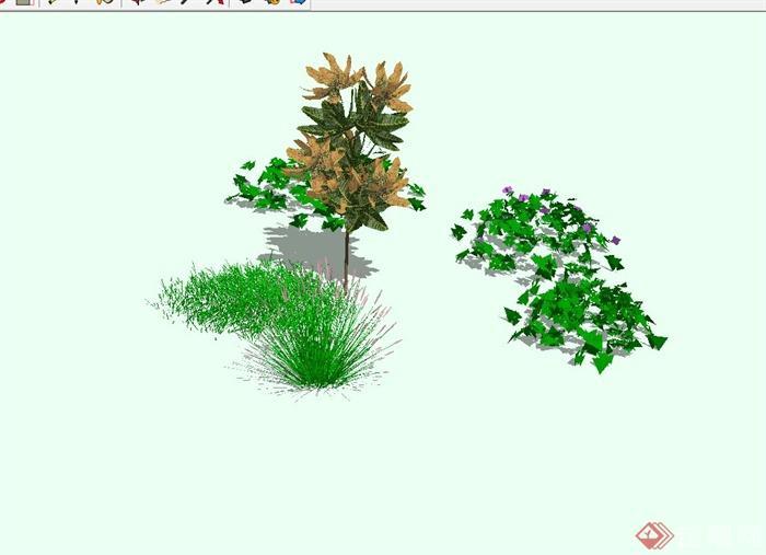 多种灌木,花卉植物设计su模型[原创]