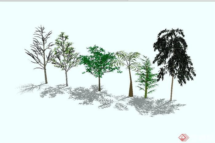 园林景观大树组合设计su模型(3)