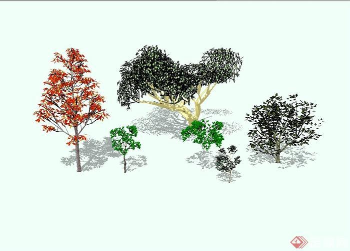 精致详细的景观树组合设计su模型(1)