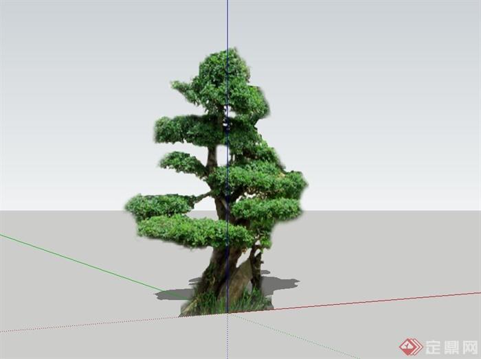某2d造型树设计su模型[原创]图片