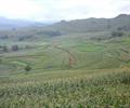 生态景观,生态园景观,农业景观
