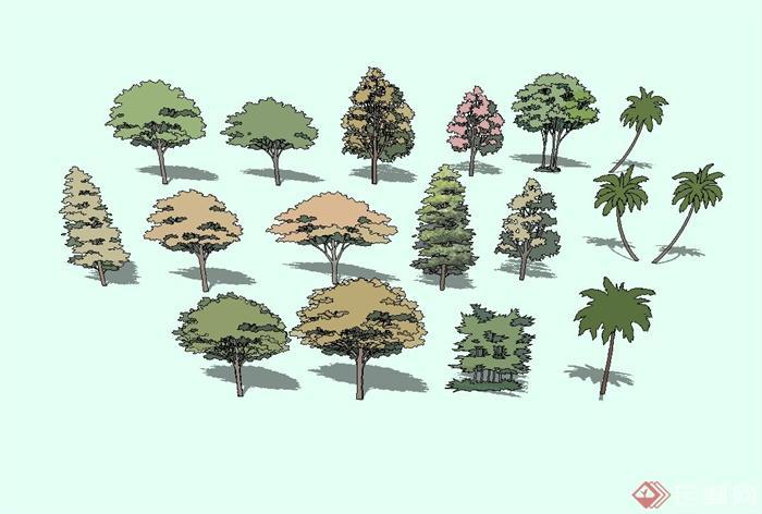 园林树标手绘