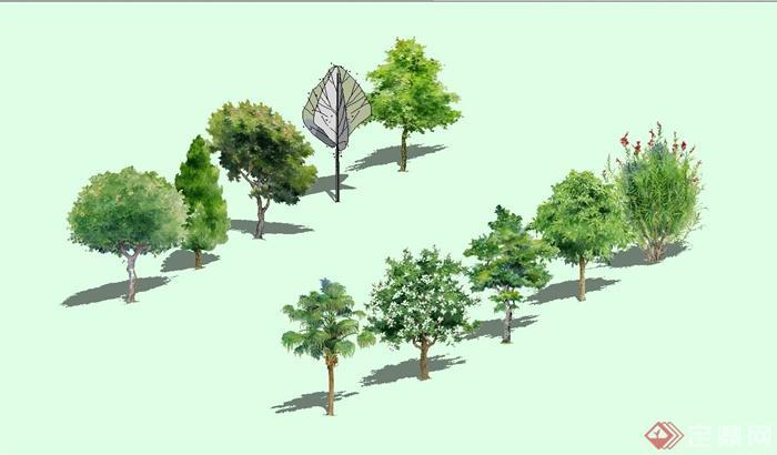 多种不同的园林手绘树木设计su模型(1)