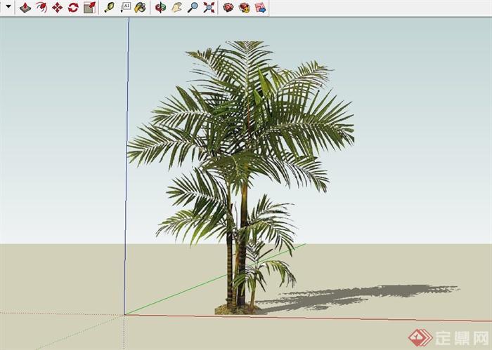 10种芭蕉棕榈热带植物设计su模型[原创]