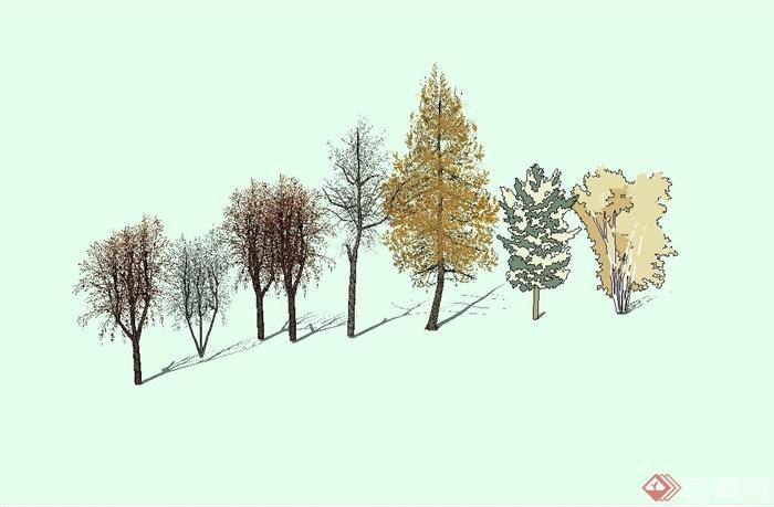 多种不同的秋天树木设计su模型(1)